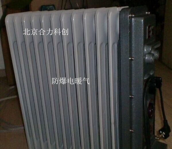 防爆油汀电暖气 型号:bdr-1500w《11片》
