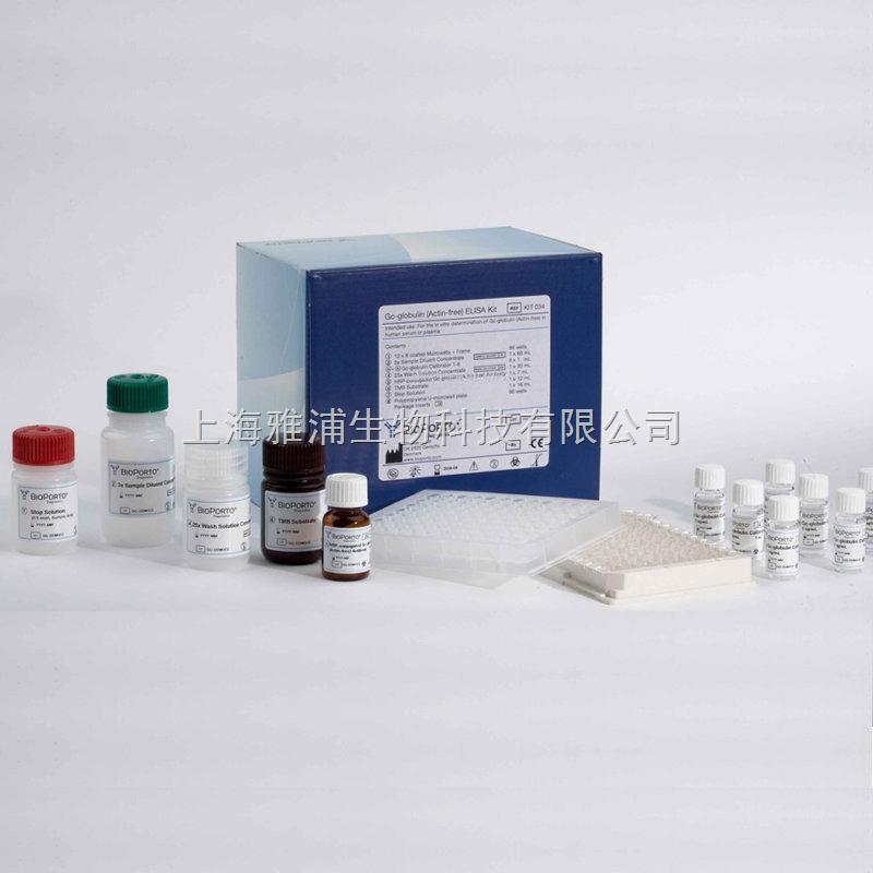 间接免疫荧光步骤