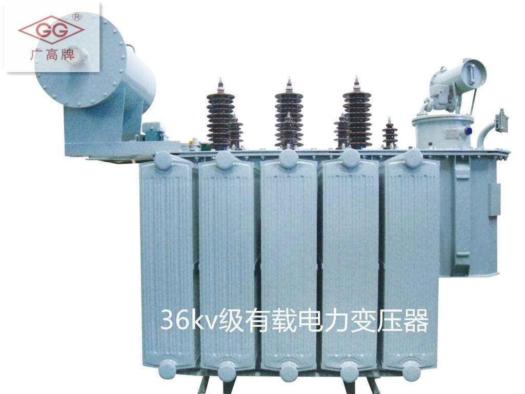 6-36kv级油浸式电力变压器