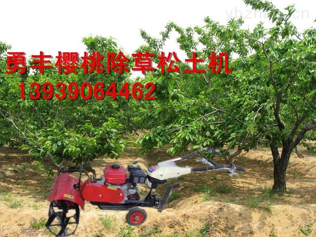 樱桃园除草松土机可以在树枝低于50mm的果树底部穿行